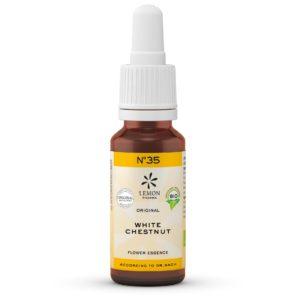 Lemon Pharma Original Bachblüten Tropfen Nr 35 White Chestnut Weisse Kastanie Gedankenstille